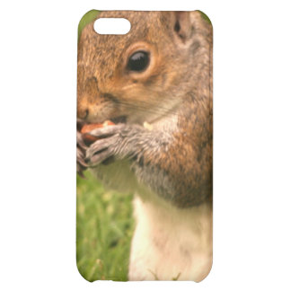 Brown Squirrel iPhone 4 Case