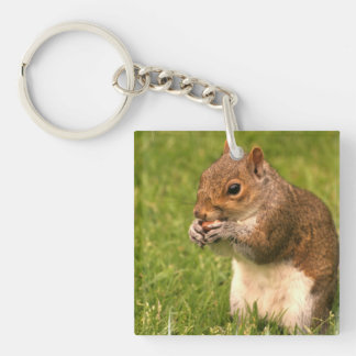 Brown Squirrel Keychain Square Acrylic Keychain