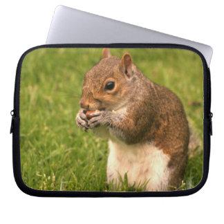 Brown Squirrel  Laptop Sleeve