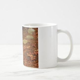 Brown Squirrel on Rock Coffee Mugs
