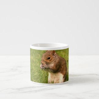 Brown Squirrel Specialty Mug Espresso Cup