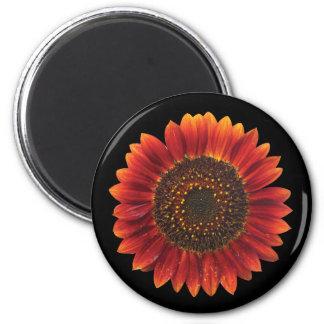 Brown Sunflower Magnet