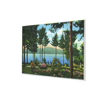 Brown Swan Park View of the Lake Canvas Print