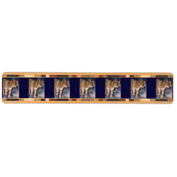 Brown Swiss Calf Key Rack