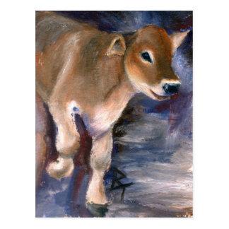 Brown Swiss Calf Postcard