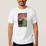 Brown Swiss Cow T Shirt