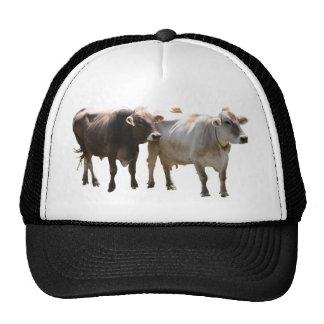 Brown Swiss Cows Trucker Hat