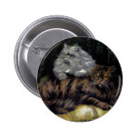 Brown Tabby and Silver Persian Artwork Button