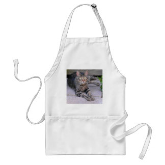 Brown Tabby Cat Adult Apron