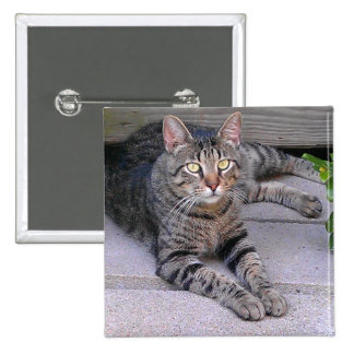 Brown Tabby Cat 2 Inch Square Button