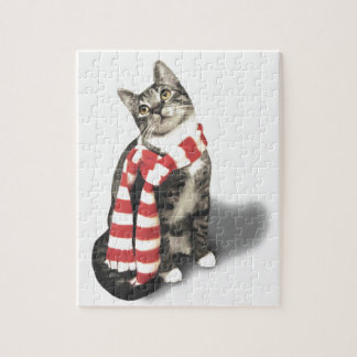 Brown Tabby Cat in a Red and White scarf Jigsaw Puzzle