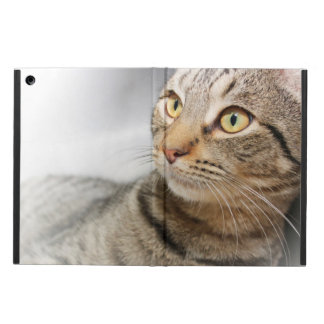 BROWN TABBY CAT IPAD AIR CASE