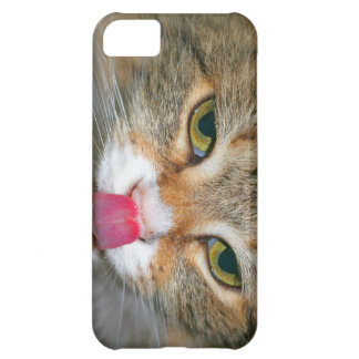 Brown Tabby Cat Licking Nose Case For iPhone 5C