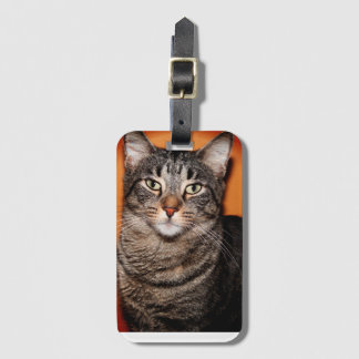 BROWN TABBY CAT LUGGAGE TAG