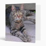 Brown Tabby Cat Vinyl Binders