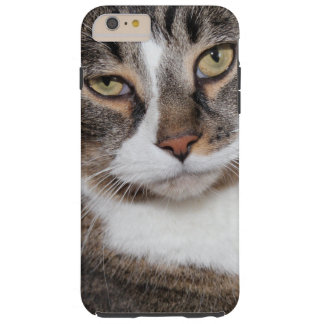 BROWN TABBY IPHONE CASE TOUGH iPhone 6 PLUS CASE