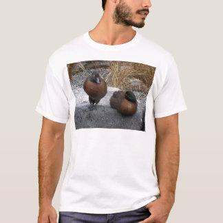 Brown Teal T-Shirt