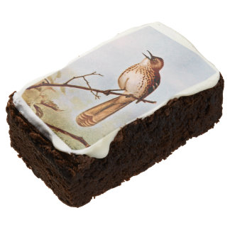 Brown Thrasher Bird Art Chocolate Brownie