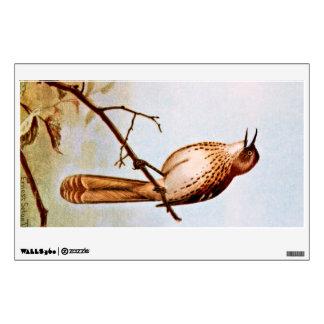 Brown Thrasher Bird Art Wall Sticker