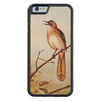 Brown Thrasher Bird Art Carved® Maple iPhone 6 Bumper Case