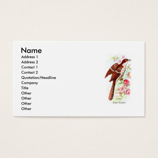 Brown Thrasher Business Card
