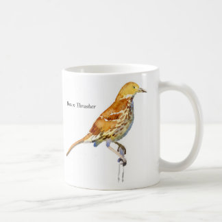 Brown Thrasher Coffee Mugs
