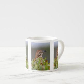 Brown Thrasher Espresso Cup