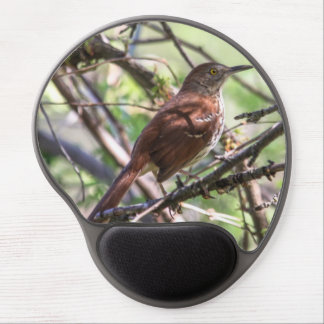 Brown Thrasher Gel Mouse Pad