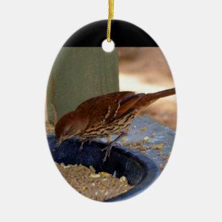 Brown Thrasher (Georgia) Ceramic Ornament