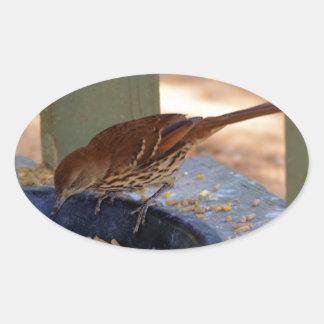 Brown Thrasher (Georgia) Pegatina Ovalada