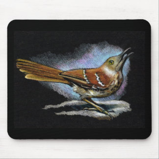 BROWN THRASHER in Color Pencil: Art Mouse Pad