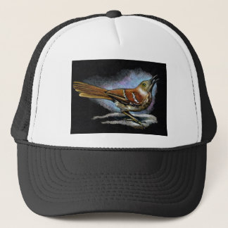 BROWN THRASHER in Color Pencil: Art Trucker Hat