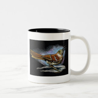 BROWN THRASHER in Color Pencil: Art Two-Tone Coffee Mug