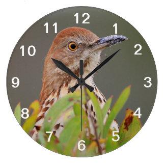Brown Thrasher Large Clock