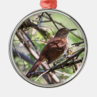 Brown Thrasher Metal Ornament