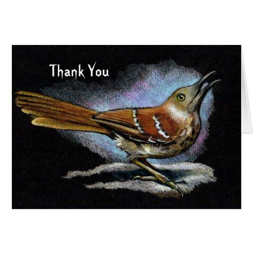 Brown Thrasher: Pájaro: Arte de la fauna: Gracias Tarjeta De Felicitación