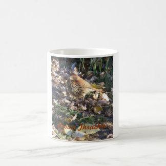 Brown Thrasher, Sunshine Coffee Mug