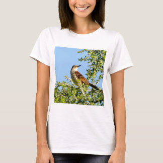 Brown Thrasher T-Shirt