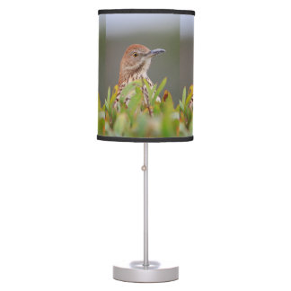 Brown Thrasher Table Lamp