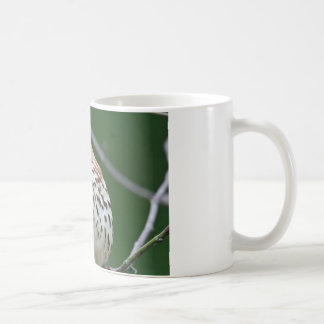 Brown Thrasher w/ Catch Of the Day Gifts Apparel Coffee Mug