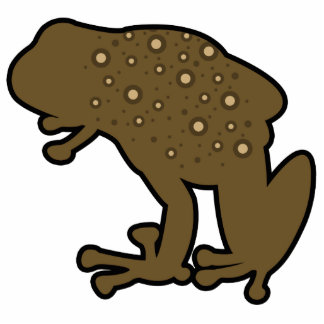 Brown Toad Photo Cut Out