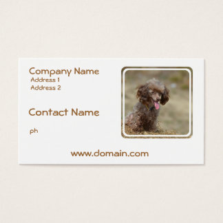 Brown Toy Poodle Business Card