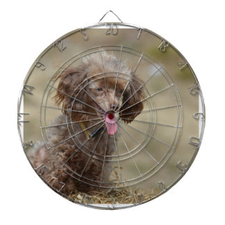 Brown Toy Poodle Dart Board