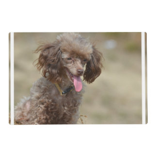 Brown Toy Poodle Placemat