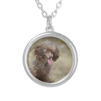 Brown Toy Poodle Round Pendant Necklace