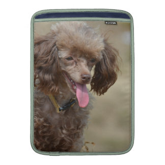 Brown Toy Poodle Sleeve For MacBook Air