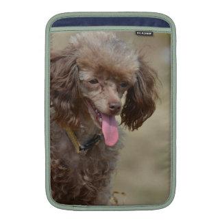 Brown Toy Poodle Sleeves For MacBook Air