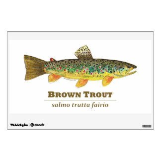 Brown Trout, Latin Name Wall Sticker
