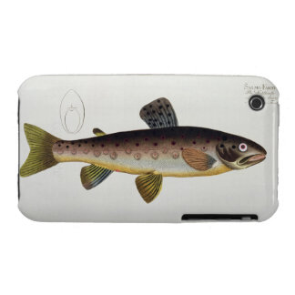 Brown Trout (Salmo Iasustris) plate XXIII from 'Ic iPhone 3 Case-Mate Case