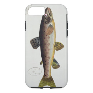 Brown Trout (Salmo Iasustris) plate XXIII from 'Ic iPhone 7 Case